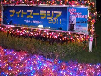 20110828blogyokozoo(1).JPG