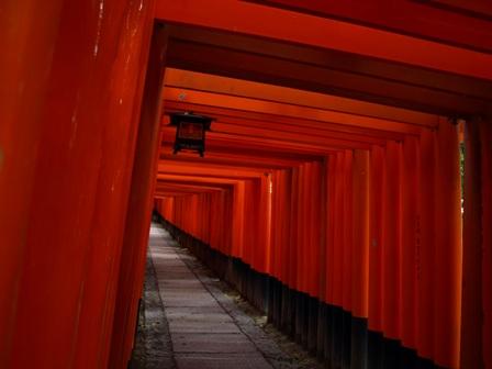 blog-fusimi-torii.JPG