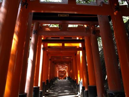 blog-fusimi-torii2.JPG